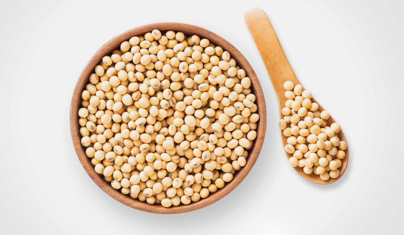 Soja - ingrediënt