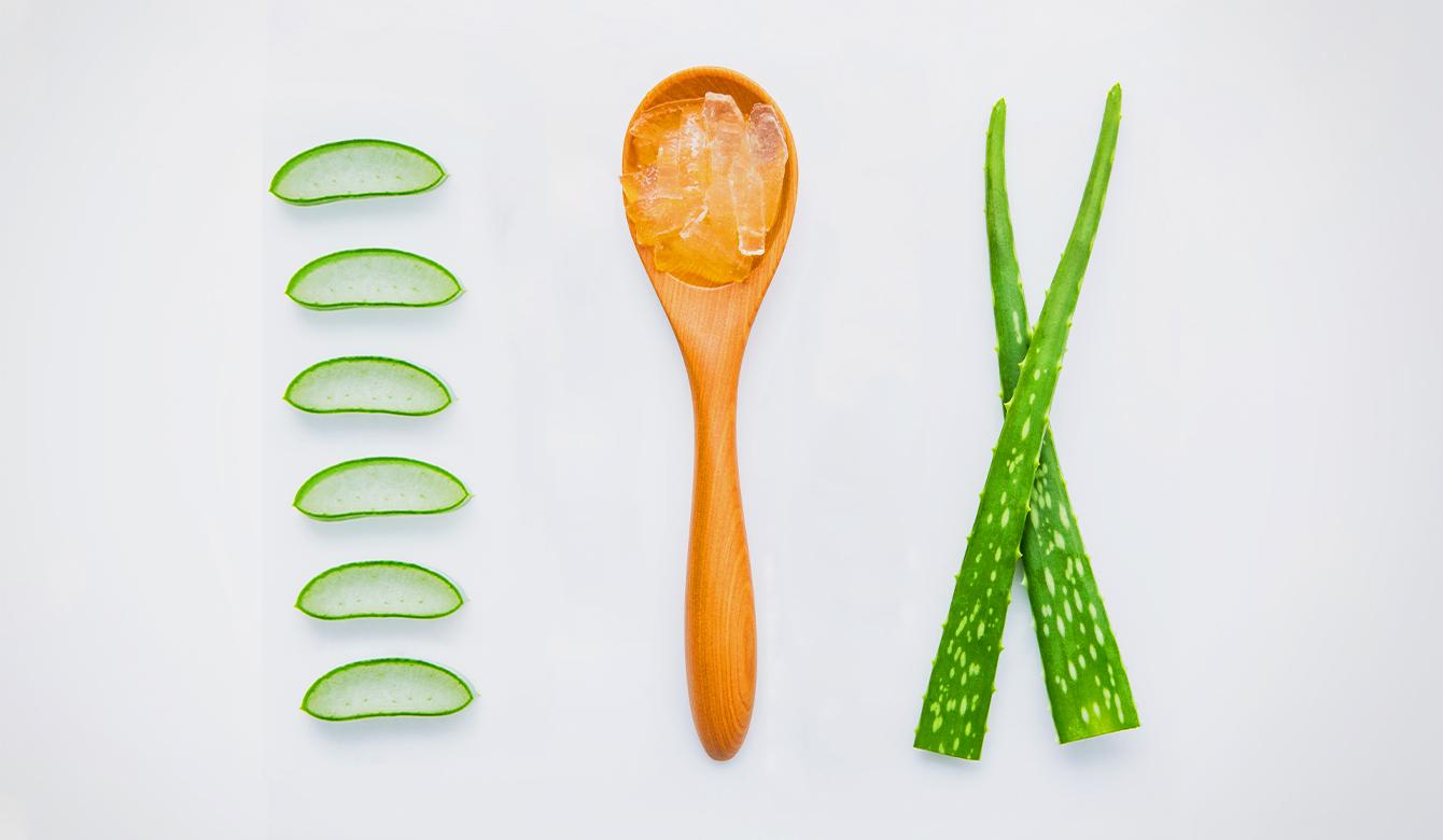 Aloe Vera - ingrediënt